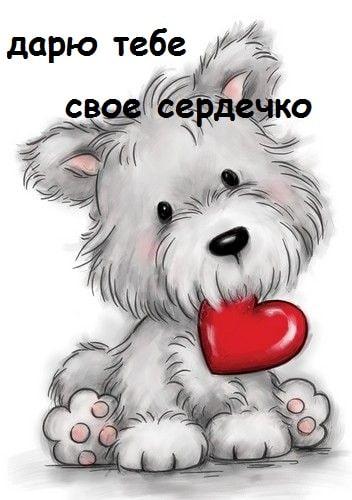 Прикольные картинки на 14 февраля. Смешные открытки на День Святого Валентина