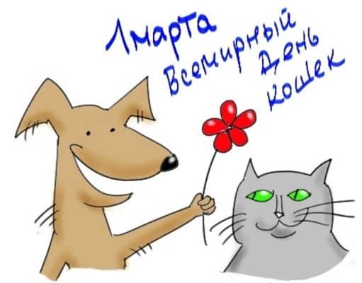 с днем кота