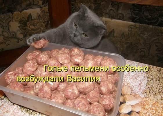 когда день пельменей в россии