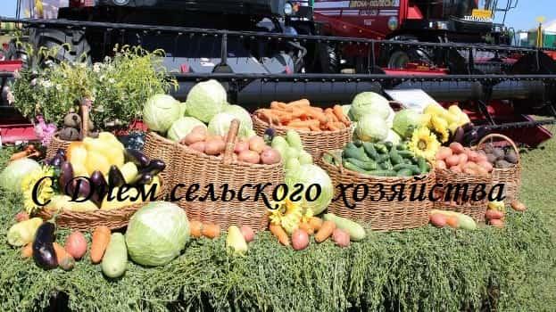 День сельского хозяйства: лучшие поздравления (в смс, стихах, прозе)
