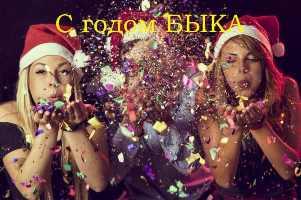 новый год поздравления картинки