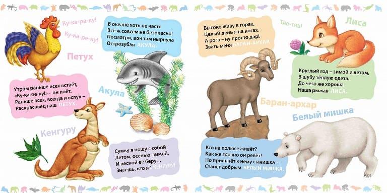 Самые интересные загадки для детей 5 лет (с ответами)