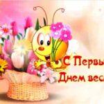 Первый День весны - самые прикольные картинки