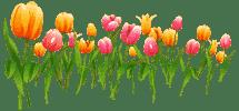 красивые поздравления воспитателям с 8 марта