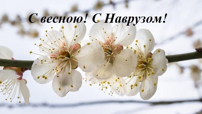 Самые красивые поздравления с Наврузом (в стихах и прозе)