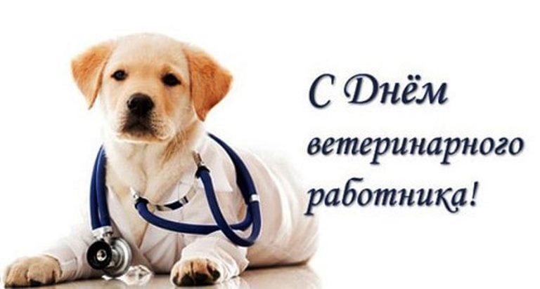 Поздравления с Днем ветеринарного врача (в стихах, прозе, коллегам)