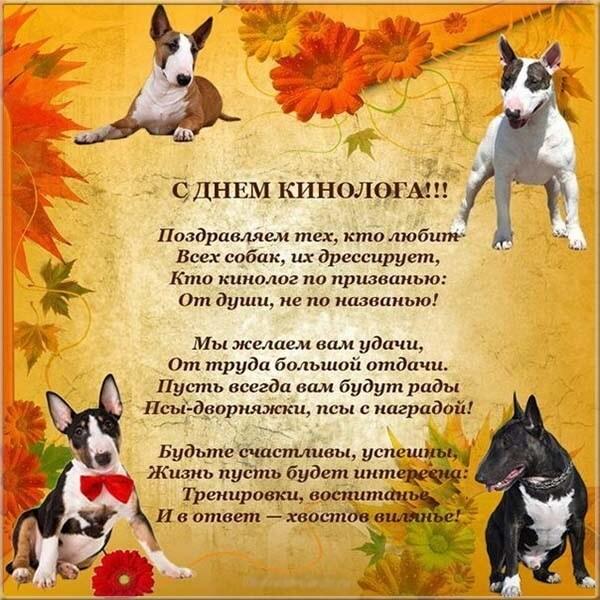 Поздравление с днем рождения собаке стих сушилка