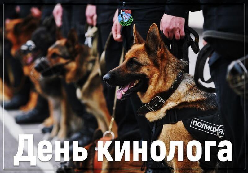 Поздравления с Днем кинолога МВД и ФСИН (в стихах, картинки, в прозе)